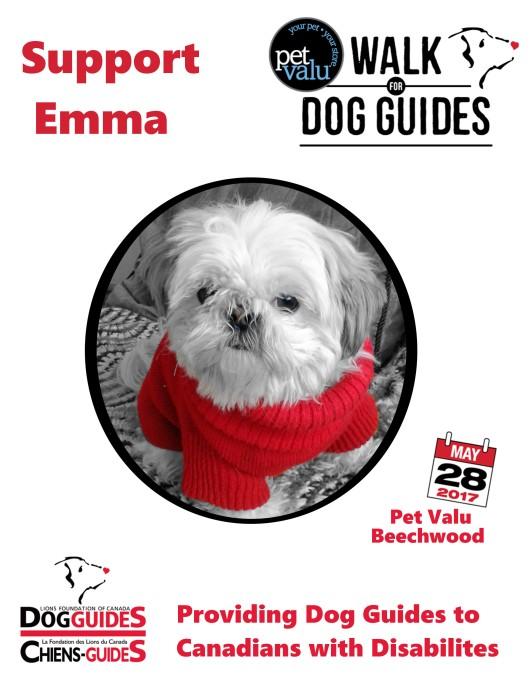 Team Emma Poster