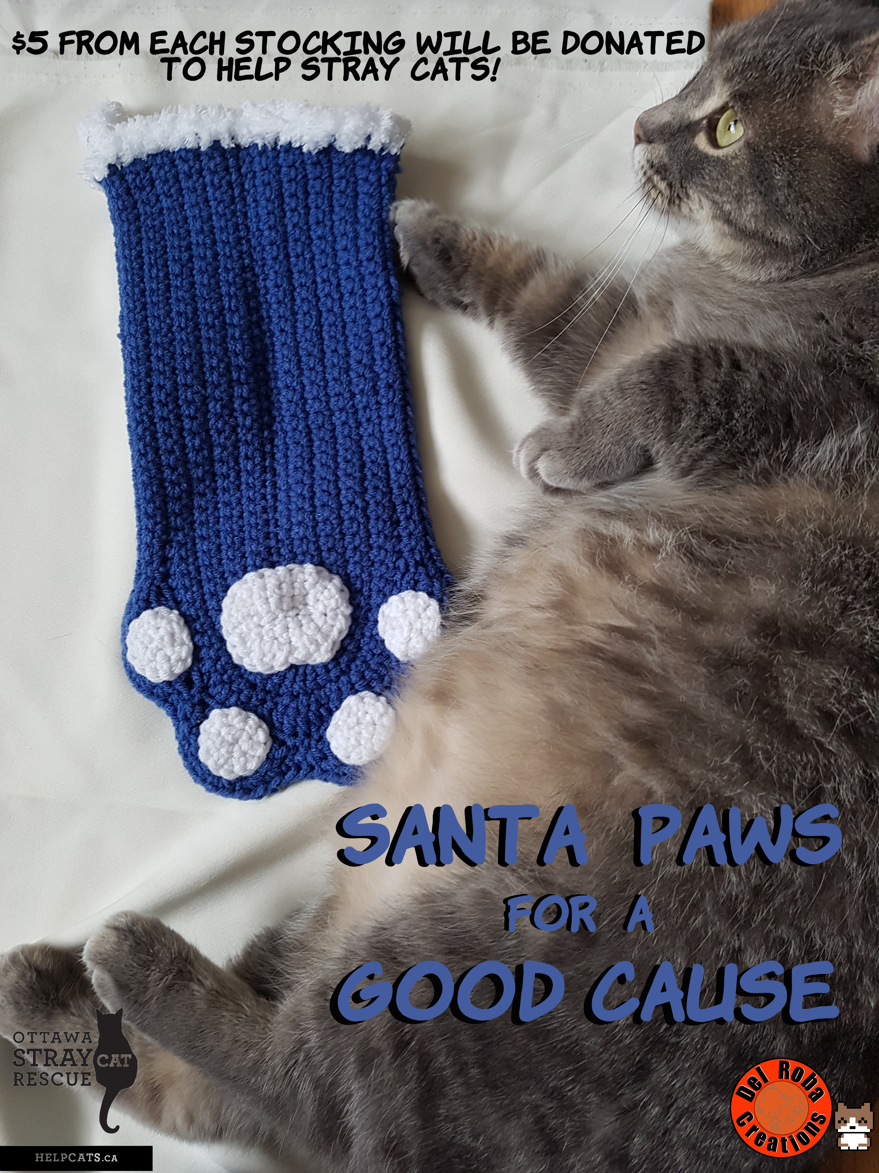 Santa Paws Caturday